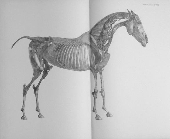STUBBS (GEORGE) The Anatomy of the Horse