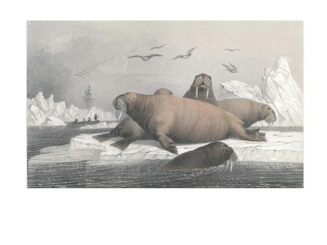 CHYDENIUS (JAKOB KARL EMIL) Svenska Expeditionen til Spetsbergen år 1861 Utförd under Ledning af Otto Torell, 2 parts, 1865