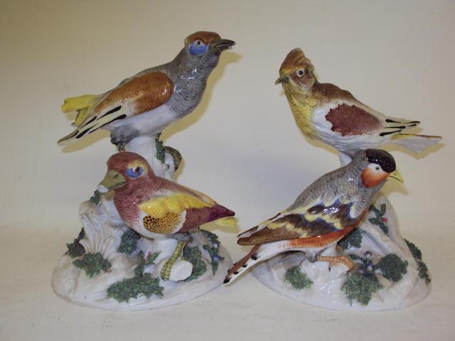 A pair of Hochst-style bird groups