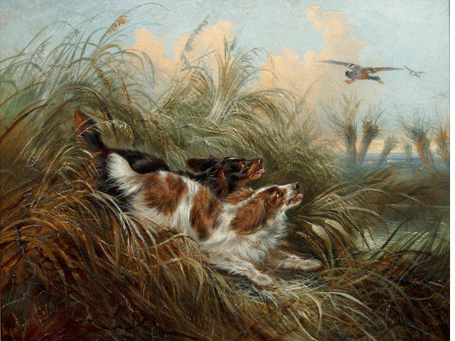George Armfield (British, 1810-1893) Two spaniels chasing a mallard