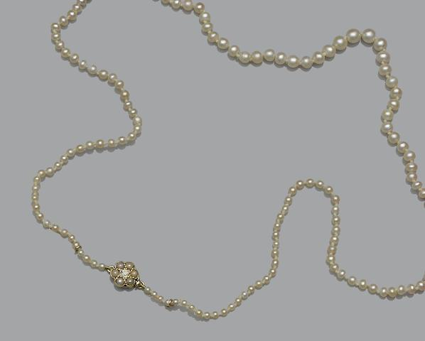 A single strand pearl necklace (2)