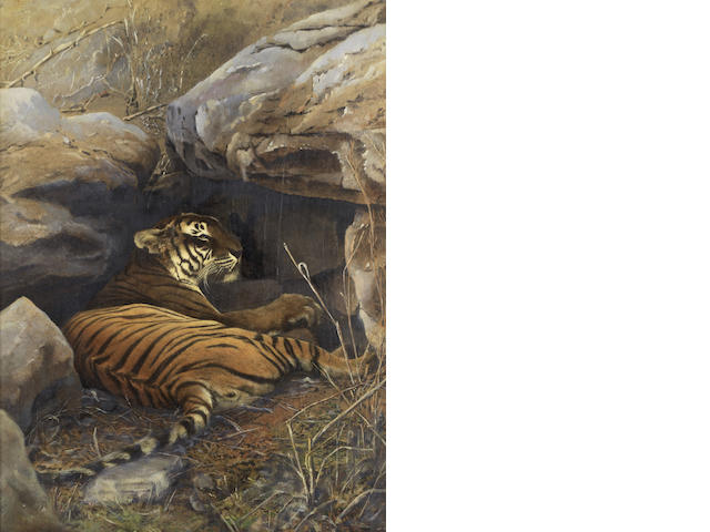 HOOPER (WILLOUGHBY WALLACE) A hand-coloured and overpainted photograph of a lying tiger, [c.1870] (2)