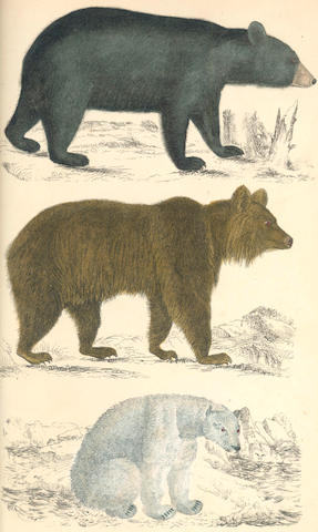 GOLDSMITH (OLIVER) A History of the Earth and Animated Nature, 2 vol., 1855; and a small quantity of others (quantity)