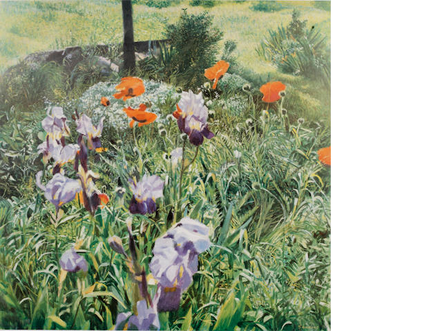 Christopher Sanders RA (British, 1905-1991) Irises approximately 100 signed limited colour prints, 62 x 62cm; together with 'Poppies' - approximately 150. 250 unframed works