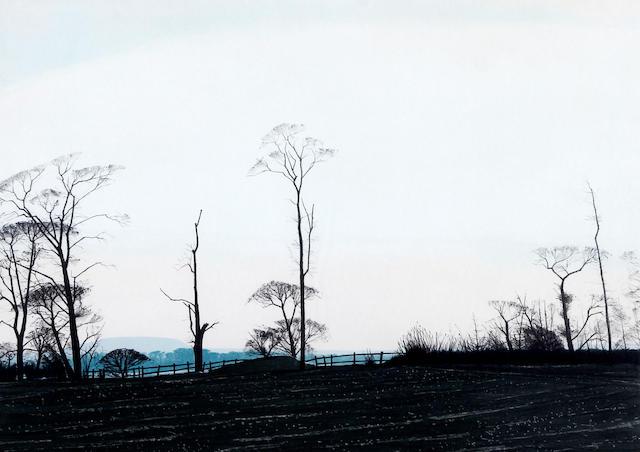 Peter Brook (British, 1927-2009) Trees