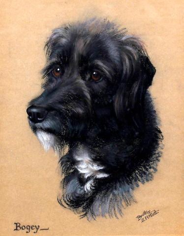 Dorothy S. Hallett (British, 1913-1930) 'Bogey', head of a dog