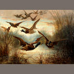 Follower of John Frederick Herring, Jnr. (British, 1815-1907) Ducks flying over a reed bed