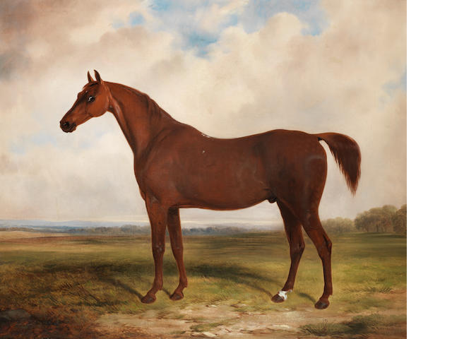 William Barraud (British, 1810-1850) A chestnut horse in a landscape