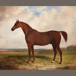 William Barraud (British, 1810-1850) Volt: a chestnut stallion in a landscape