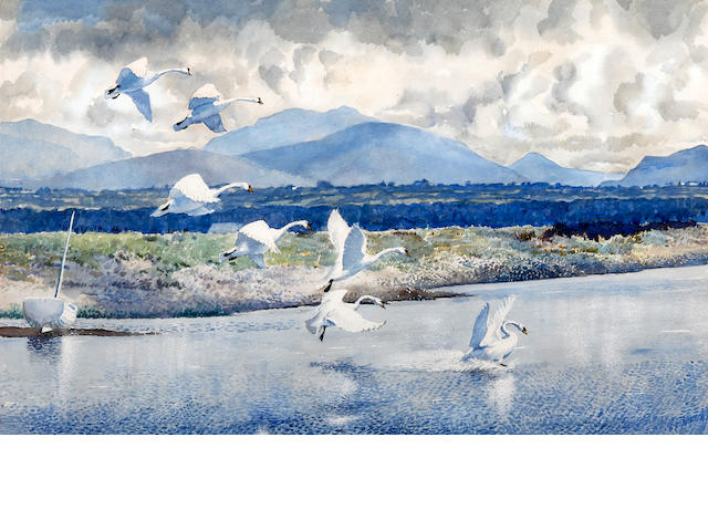 Charles Frederick Tunnicliffe R.A. (British, 1901-1979) Anglesey Swans