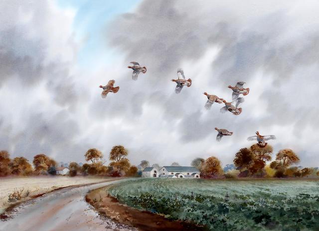 Robert W. Milliken (British, born 1920) 'Partridge at Holkham'