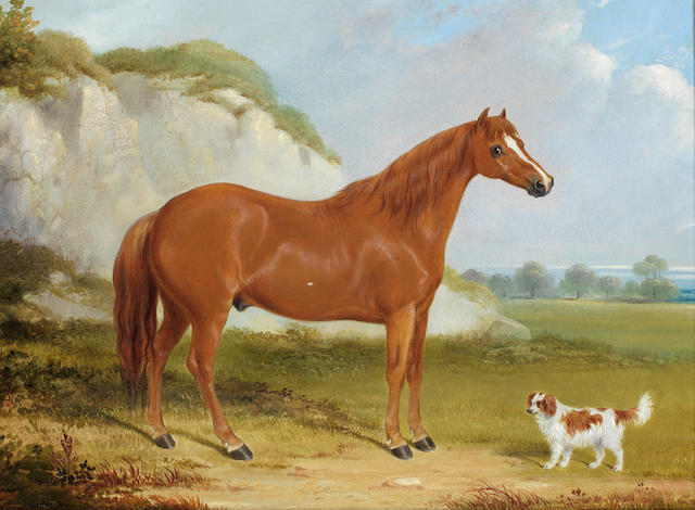 William Barraud (British, 1810-1850) A chestnut horse and spaniel in a landscape