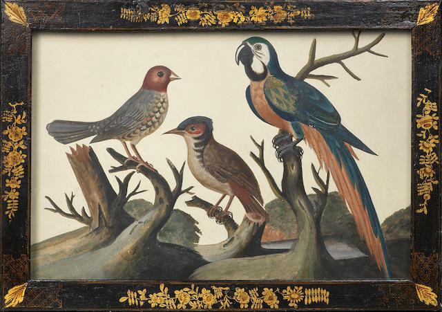 Dixon - embossed birds