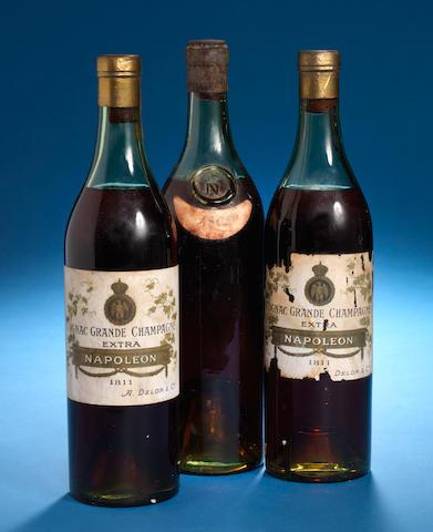 Napoleon Grande Champagne Cognac 1811 (1)