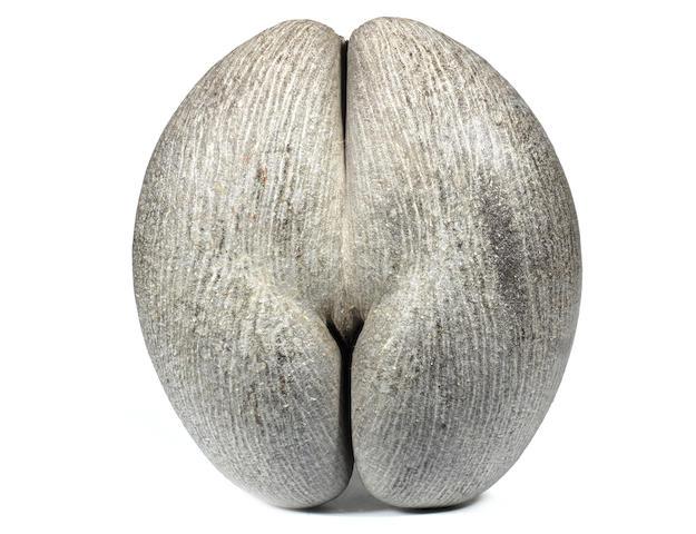 A large unworked Coco de Mer nut (Lodoicea Maldivica)