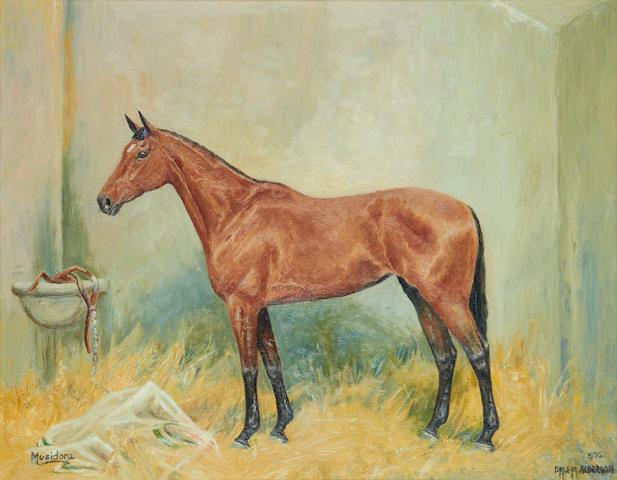 """Elizabeth Mary Alderson (1900-1988), and Dorothy Margaret Alderson (1900-1992) Racehorse """"Musidora"""""""