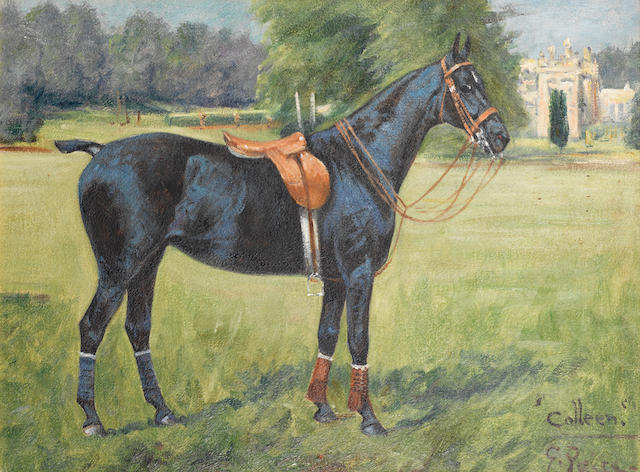 "George Paice (British, 1854-1925) ""Colleen"", portrait of a polo pony"