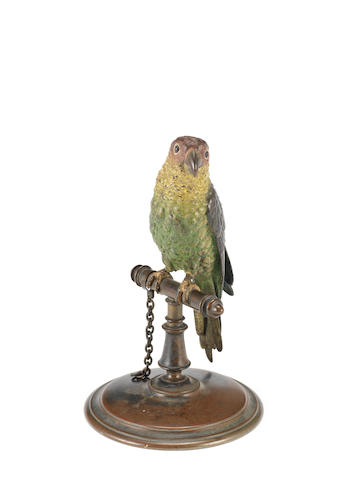 A late 19th century Austrian cold painted spelter model of a parrot
