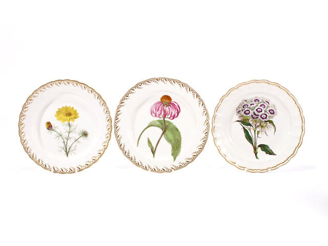 Three Derby botanical plates, circa 1785-90