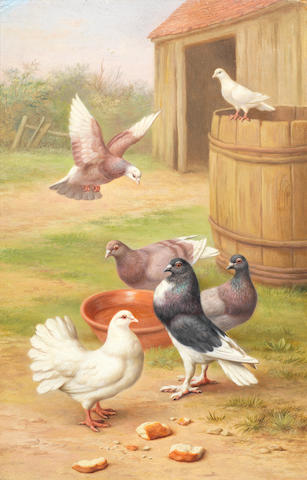Edgar Hunt (British, 1876-1955) Doves in a farmyard