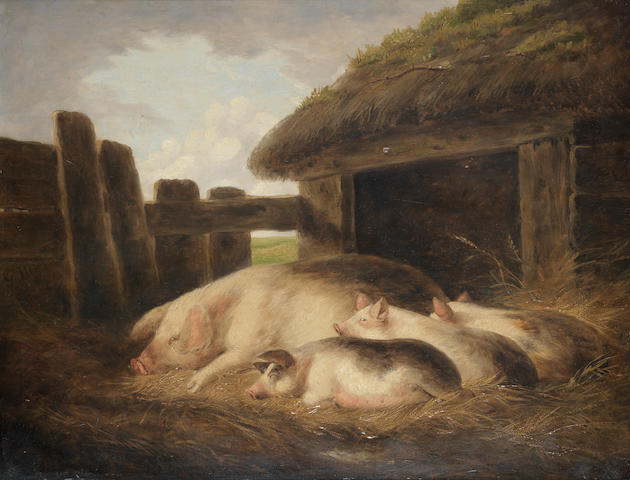 English School, 19th century A Large White sow with her three piglets