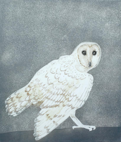 Dame Elisabeth Frink R.A. (British, 1930-1993) Barn Owl (from Six Owls) Etching with aquatint printed in colours, 1997, on BFK Rives, signed and numbered 58/75 in pencil, printed at White Ink Ltd., published by Leslie Waddington Prints Ltd., 530 x 450mm (21 1/8 x 17 3/4in)(PL)