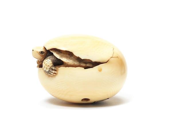 A rare ivory netsuke of a hatching turtle By Ohara Mitsuhiro (1810-1875), Osaka, 19th century