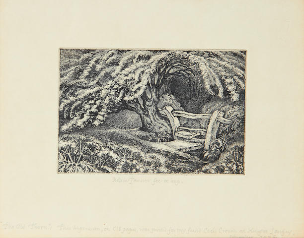 Robin Tanner (British, 1904-1988) The Old Thorn Etching, 1975, on wove, signed and inscribed 'fet. et imp.' in pencil, titled, dated and dedicated 'for my friend Cecil Crouch' in pencil, printed and published by the artist, from the edition of 12, with wide margins, 100 x 150mm (4 x 6in)(PL)