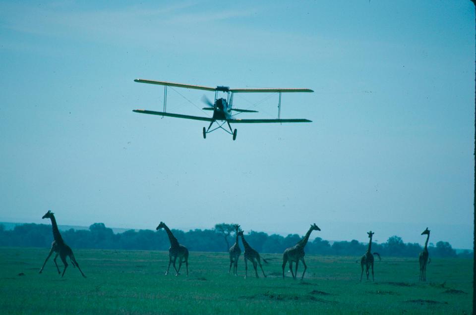 """La vedette du film """"Out of Africa""""  American Moth Corporation DH.60GMW Gipsy Moth Biplan biplace de tourisme 1929 Registration no. Immatriculation au Royaume-Uni 'G-AAMY' Numéro Constructeur '86'"""