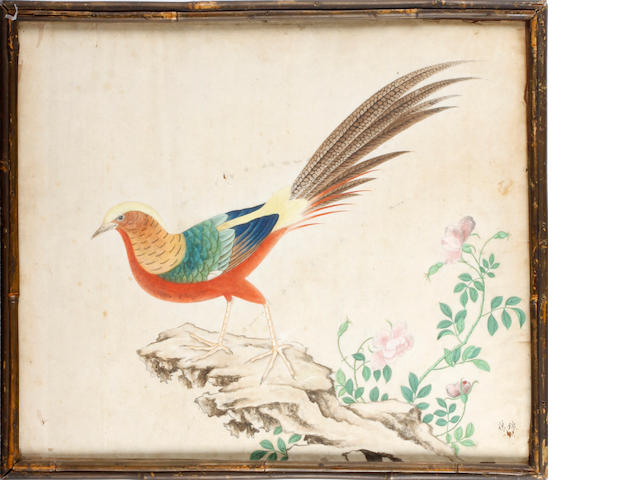Two Chinese watercolours of birds, circa 1830s