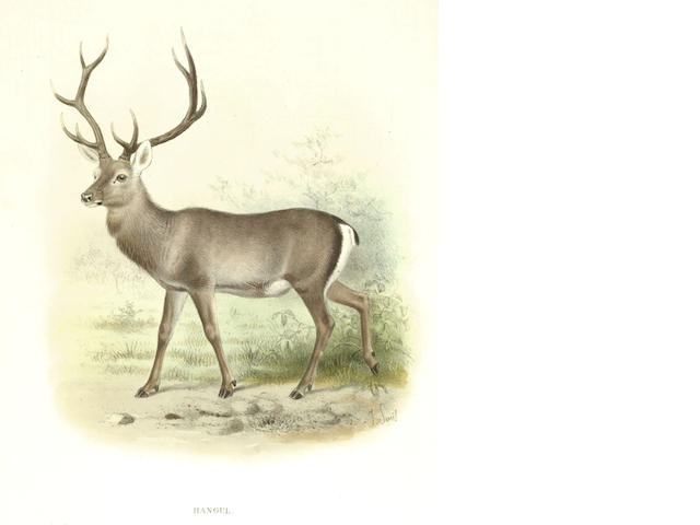 LYDEKKER (RICHARD) The Deer of All Lands, 1898