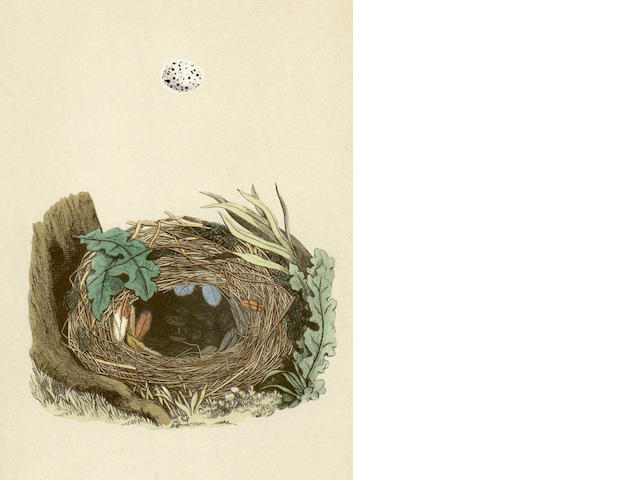 MORRIS (FRANCIS ORPEN) A Natural History of the Nests and Eggs of British Birds, 3 vol., 1875
