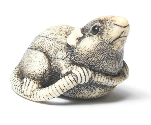 An ivory netsuke of a rat Kyoto, early 19th century