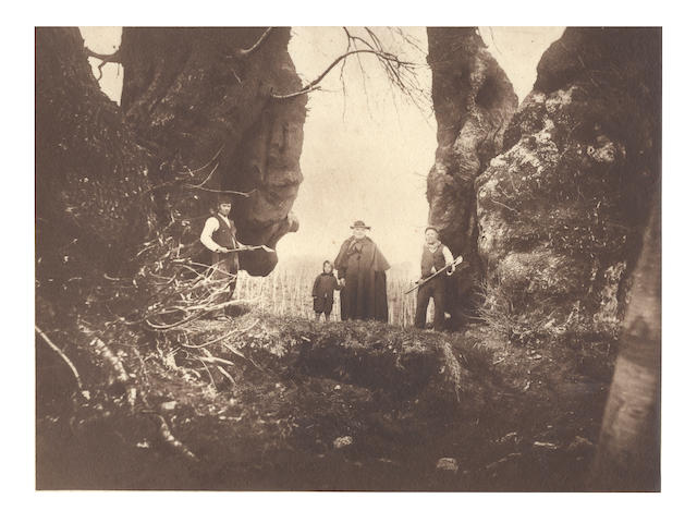 TREES A group of 5 arboricultural views, including 2 of the famous Hundred Horse Chesnut tree of Sicily, [c.1885] (5)
