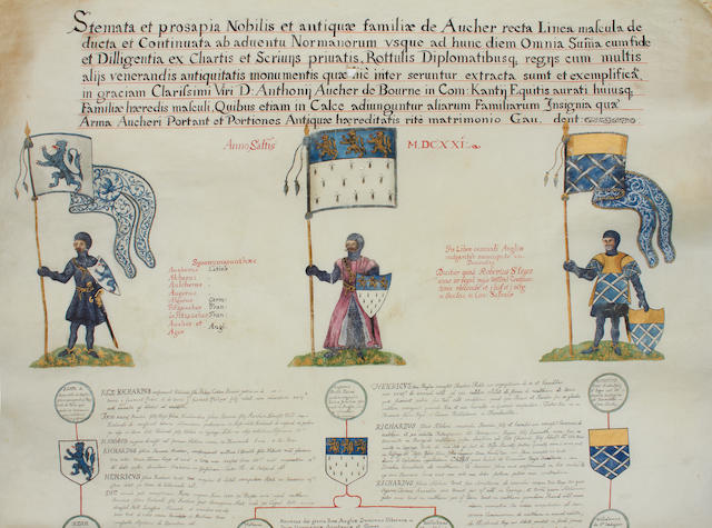 An illuminated manuscript scroll detailing the Aucher family tree, on vellum