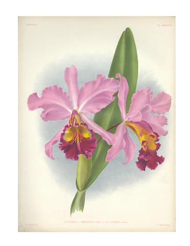 LINDEN (JEAN-JULES and LUCIEN) Lindenia. Iconography of Orchids, 72 Parts only, 1891-1897