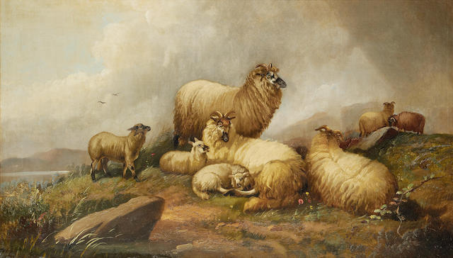 English School, late 19th Century A Highland flock