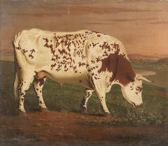 Attributed to George Cuitt the Elder (British, 1743-1818) The Blackwell Ox