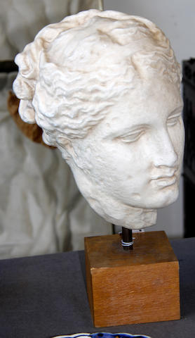 A plaster head of the Greek goddess Hygeia,