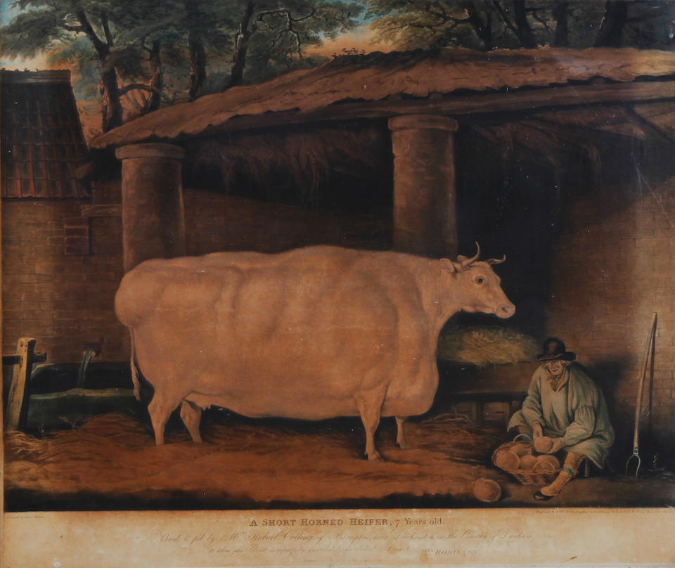 William Ward I (British, 1766-1826), after Thomas Weaver 'A Short Horned Heifer'