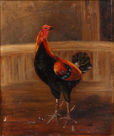 H. Whittaker Reville (British), 19th Century Fighting cocks
