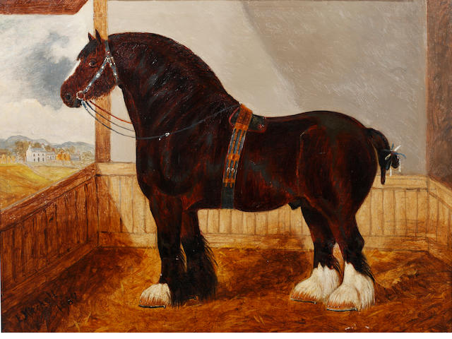 E MITCHELL Shire Horse Oil on board<BR />46 x 60cm