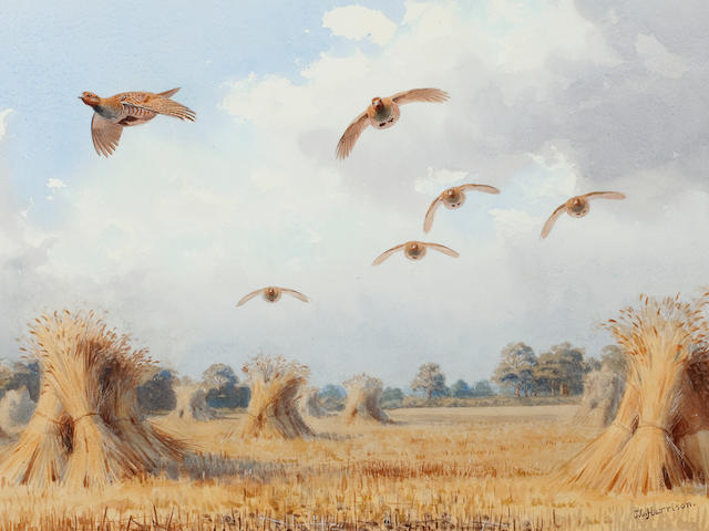 John Cyril Harrison (British, 1898-1985) September Partridges