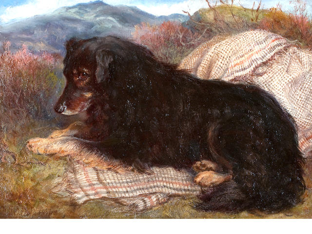 Gourlay Steel (British, 1819-1894) Collie, in a highland setting