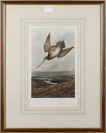 After Archibald Thorburn, published by A. Baird-Carter, British Sporting Birds, hand-coloured engravings (5)
