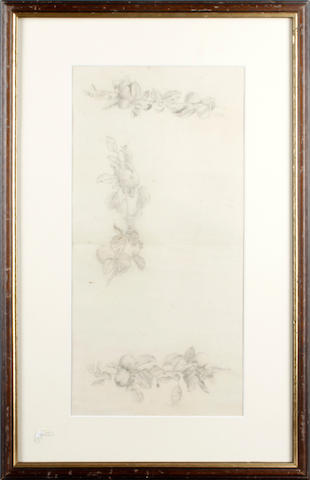 Follower of Sir Edward Coley Burne-Jones, Bt., ARA, RWS (British, 1833-1898) Study of apples,  possibly for the background of 'Arthur in Avalon'
