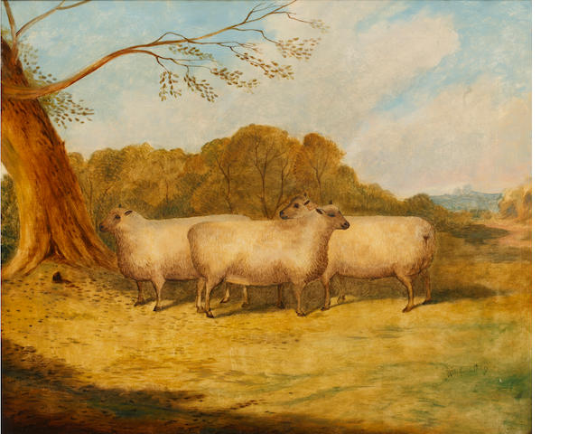 Richard Whitford Jnr. (British, late 19th Century) Sheep before a parkland setting