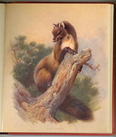 THORBURN (ARCHIBALD) British Mammals, 1920, 2 vol., 1920