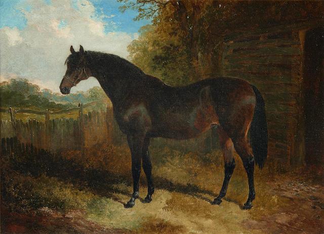 John Frederick Herring, Jnr. (British, 1815-1907) Horse in a landscape