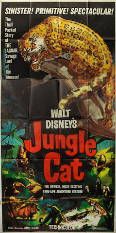 Jungle Cat, Walt Disney, 1960,